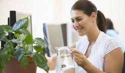 Des plantes vertes au bureau, c'est excellent pour le moral