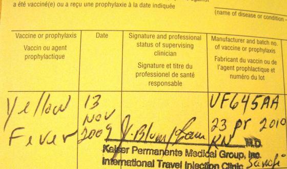 La varice variqueuse des membres inférieurs le travail de cours