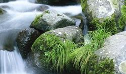 Thalasso et cure thermale : une eau si précieuse