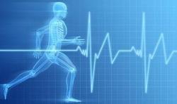 Pour brûler des calories, plutôt marcher ou plutôt courir ?